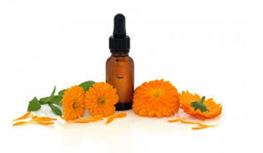 Florai-_medicamentos-extra-idos-das-flores