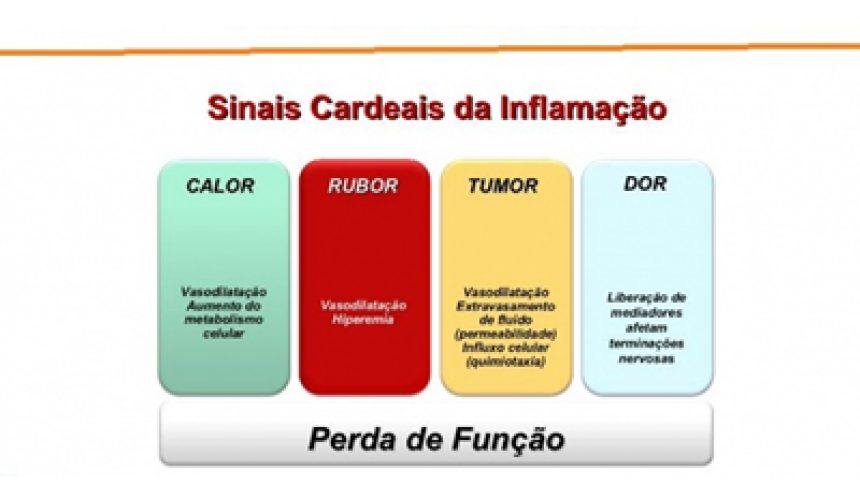 Inflamacao_significados